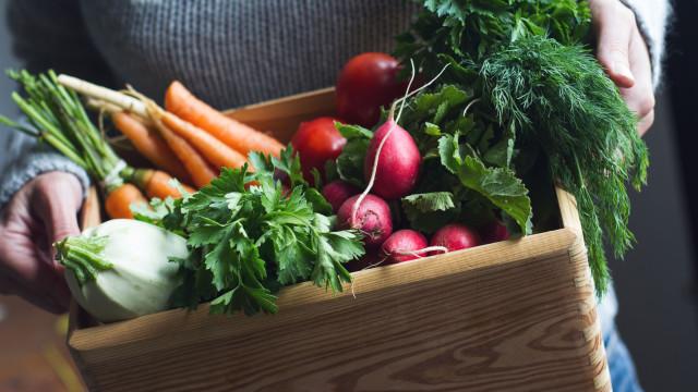 Saiba como utilizar legumes e verduras para enriquecer receitas
