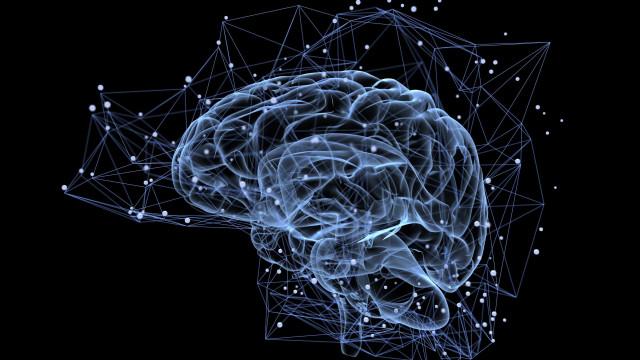 Cientistas estudam poder do cérebro para aceitar opiniões contrárias