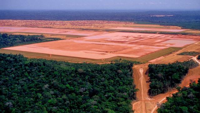 Desmatamento em unidades protegidas sobe 84%