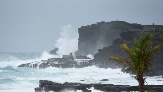 Surfista brasileiro relata 'pesadelo' com furacão no Havaí