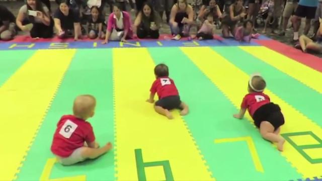 Que fofura! Bebês participam de corrida no Havaí
