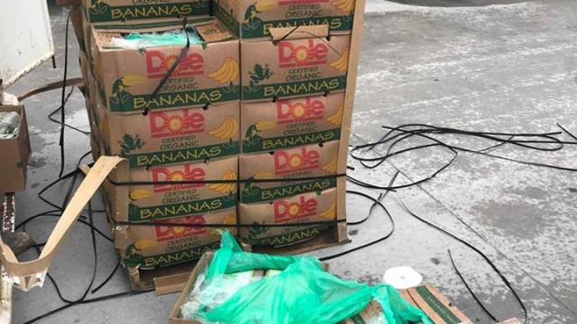 Polícia encontra cocaína escondida em caixas de bananas no Texas
