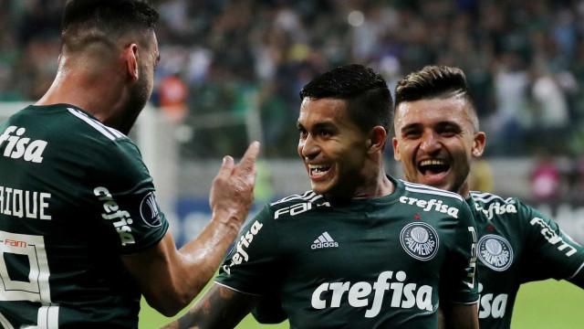 Palmeiras vai à semi da Libertadores e pode vingar eliminações