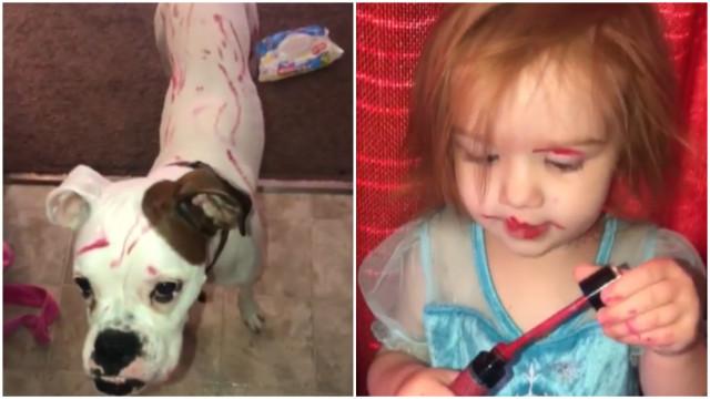 Menina pinta o cachorro com batom e resultado é hilário