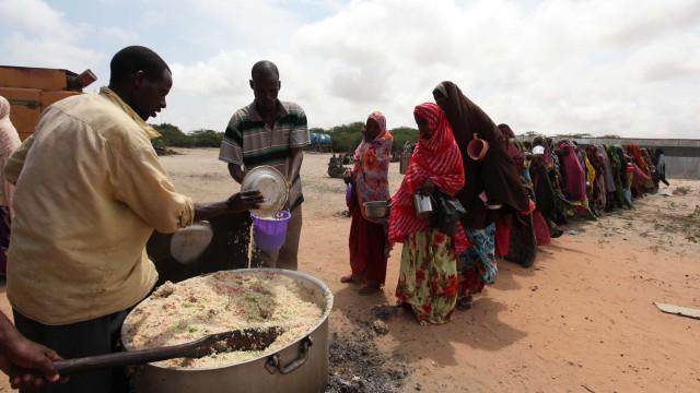 Cerca de 821 milhões de pessoas passam fome no mundo