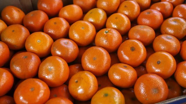 Cinco frutas saciantes para ter sempre na marmita