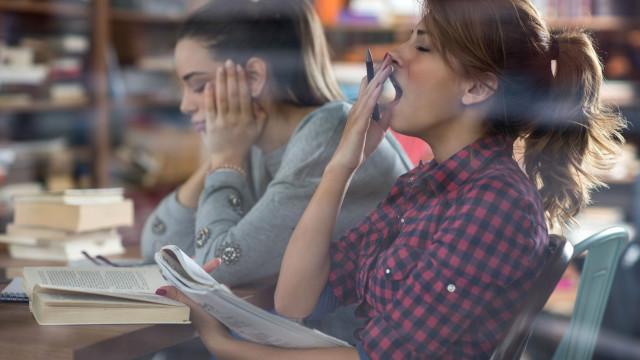 Ser preguiçoso é sinal de inteligência, comprova novo estudo