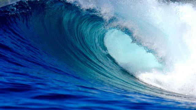 Surfista mordido por tubarão em Noronha leva 83 pontos na cabeça