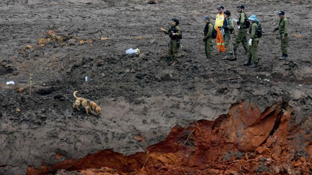 Brumadinho tem 99 mortos; 257 pessoas seguem desaparecidas