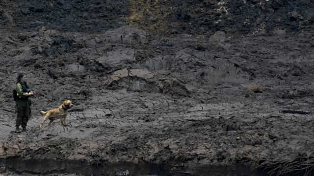Ação popular pede reparação por 'tsunami de lama' em Brumadinho