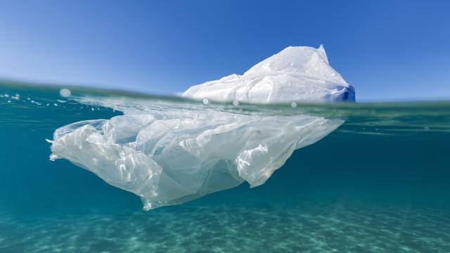 Brasil é um dos maiores consumidores de plástico, mas só recicla 2%