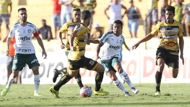 VAR estreia com polêmica e Palmeiras e Novorizontino empatam