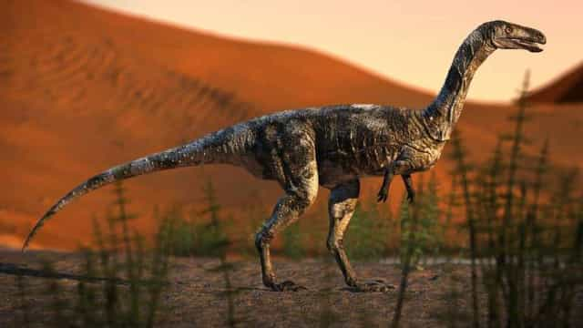 Dinossauro brasileiro descoberto andava como cavalo e tinha garras