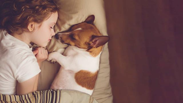 Dormir na mesma cama com um cão faz mal à saúde?