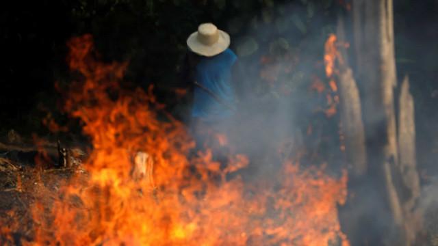Após sobrevoos, Salles diz que incêndios em MT são criminosos