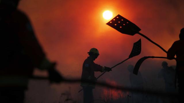 Bombeiros combatem incêndio em parque estadual no Pará
