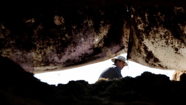 Autoridades mexicanas encontram 44 corpos em vala comum
