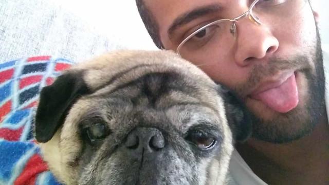Mecânico consegue direito de ver cão doente e idoso que ficou com ex