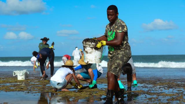 Mais de 525 toneladas de resíduos foram retiradas de praias com óleo