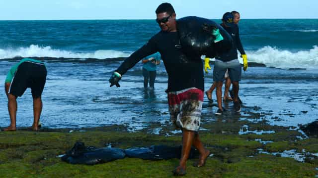 Ibama e governo de PE divergem sobre como conter óleo em praias