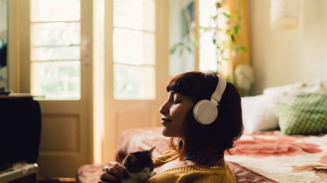 Inteligência Artificial julga o seu gosto musical de forma impiedosa