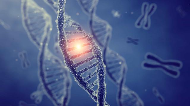 Cientistas estão mais perto de catalogar vias biológicas do cancêr