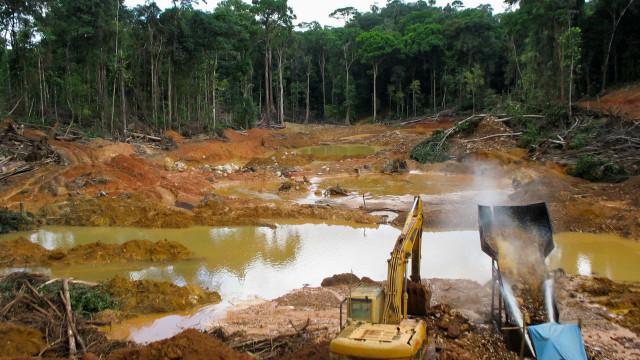 Desmatamento cresce 27% entre 2018 e 1º ano do governo Bolsonaro