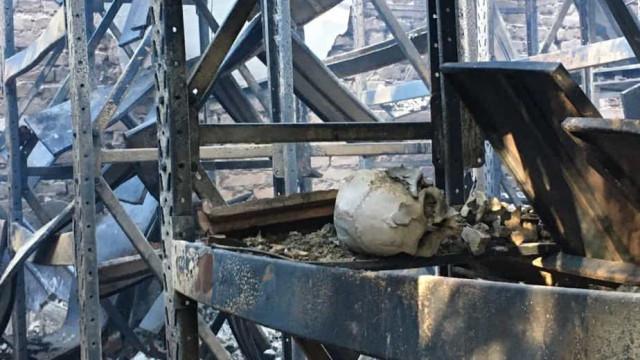 Incêndio atinge prédio anexo do Museu de História Natural da UFMG