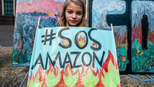 Governo demorou a agir contra desmatamento, admite Mourão