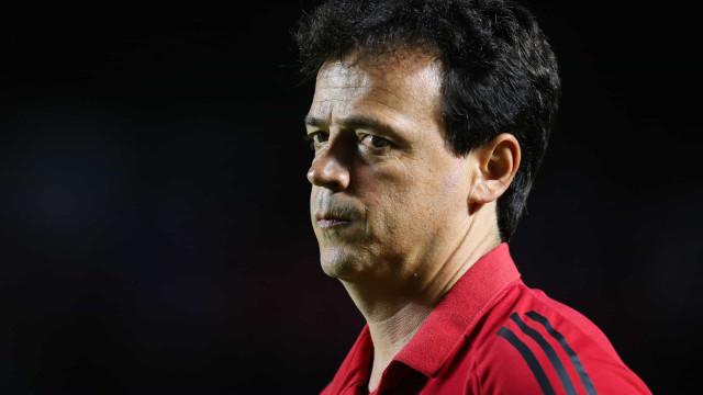 Botafogo procura Fernando Diniz, que avalia opções no mercado