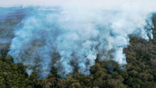 País não está preparado para incêndios, diz secretário de MS
