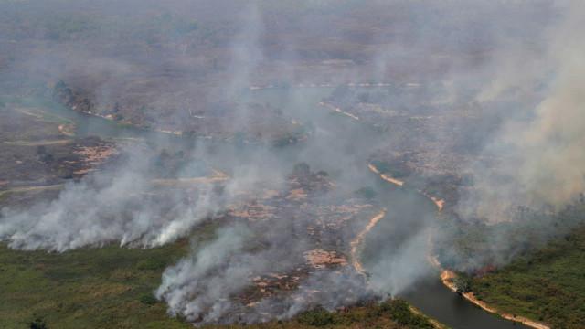 Entidades e personalidades assinam carta em defesa do Pantanal