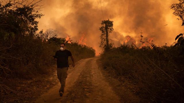 Queimada no Pantanal é desastre sem precedentes, diz Rodrigo Agostinho