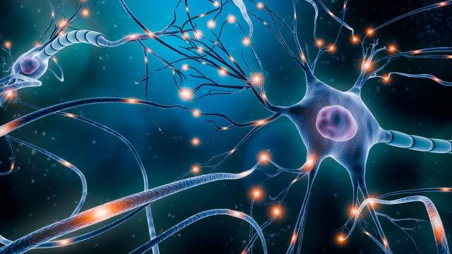 Neurônios cansados podem provocar distorção na percepção do tempo