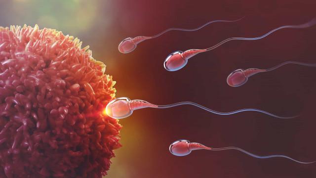 Estudo: Cirurgia bariátrica pode afetar qualidade dos espermatozoides