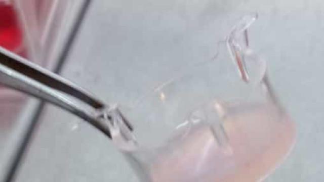Pele 3D criada em laboratório permite avaliar segurança de cosméticos