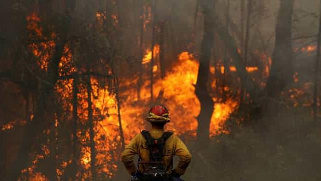 Governador da Bahia decreta emergência em 73 municípios por incêndios