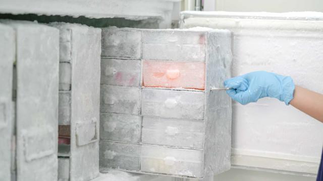 Europa adota regra que amplia armazenamento da vacina da Pfizer em geladeira comum