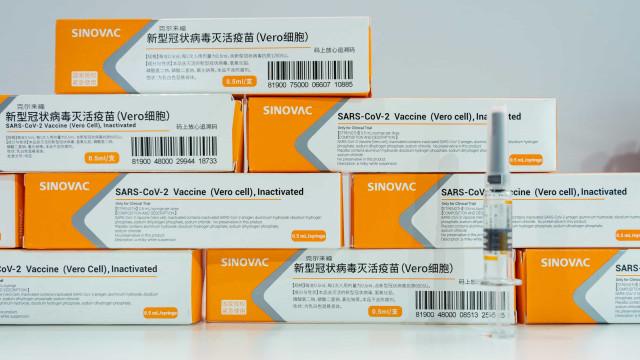 Fabricante da Coronavac fornecerá até 380 milhões de doses à iniciativa Covax