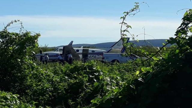 Avião com vacinas contra a Covid-19 se choca com um jumento na Bahia