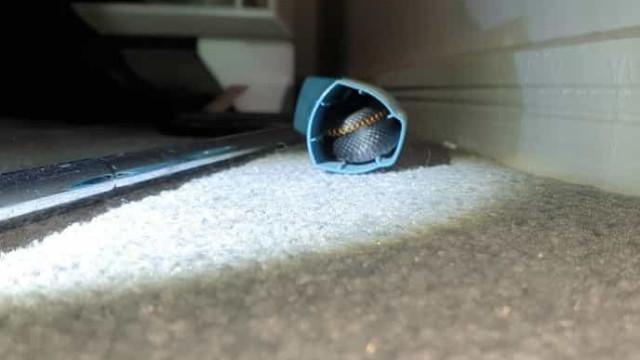 Jovem encontra cobra dentro da 'bombinha' do remédio para asma