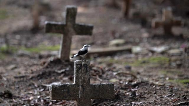 Estado do Rio registra 328 mortes e 5.316 novos casos de covid-19 em 24 horas