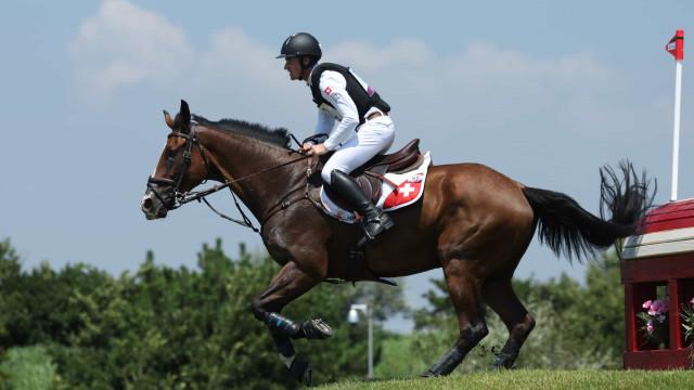 Cavalo é sacrificado após lesão em apresentação do hipismo dos Jogos Olímpicos