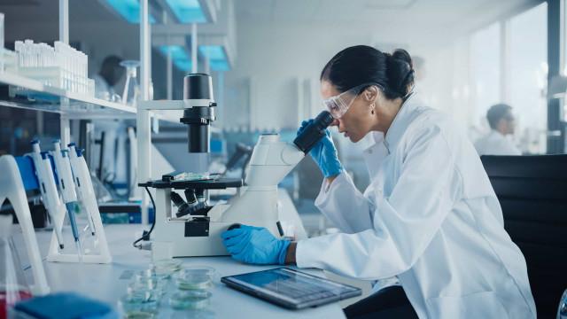 Pesquisadoras ocupam 2% dos cargos liderança em Ciência e Tecnologia