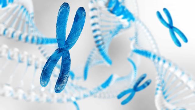 Pessoas com número anormal de cromossomos são mais propensas a câncer