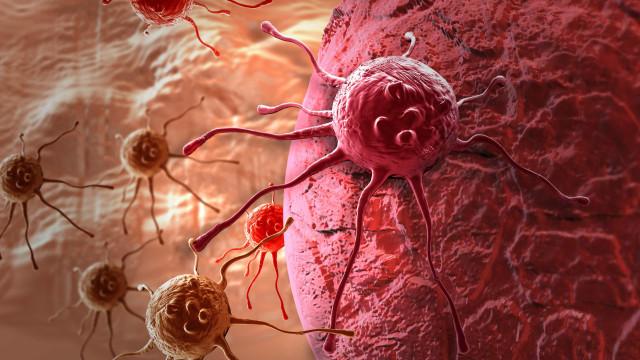 Os cinco cancros que mais matam no mundo e os seus principais sintomas