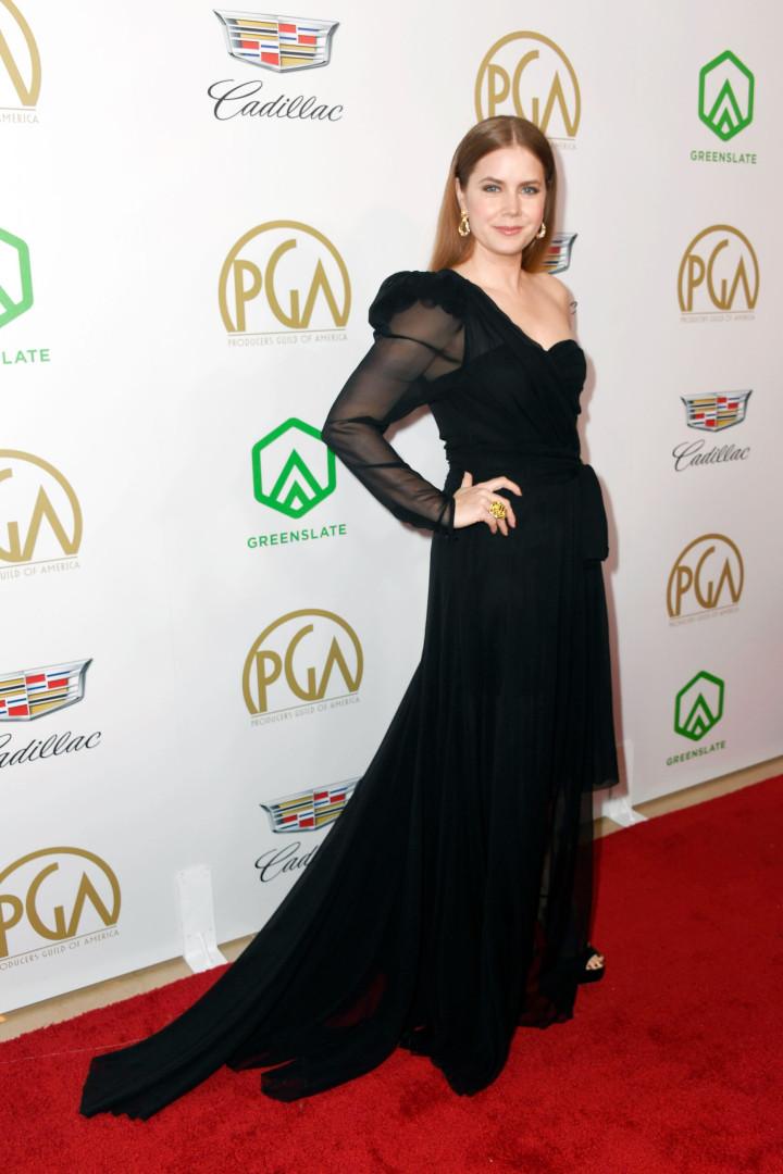 Producers Guild Awards 2019: veja os vestidos que marcaram a noite