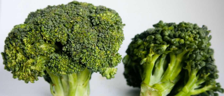 Conheça os benefícios do brócolis para a saúde