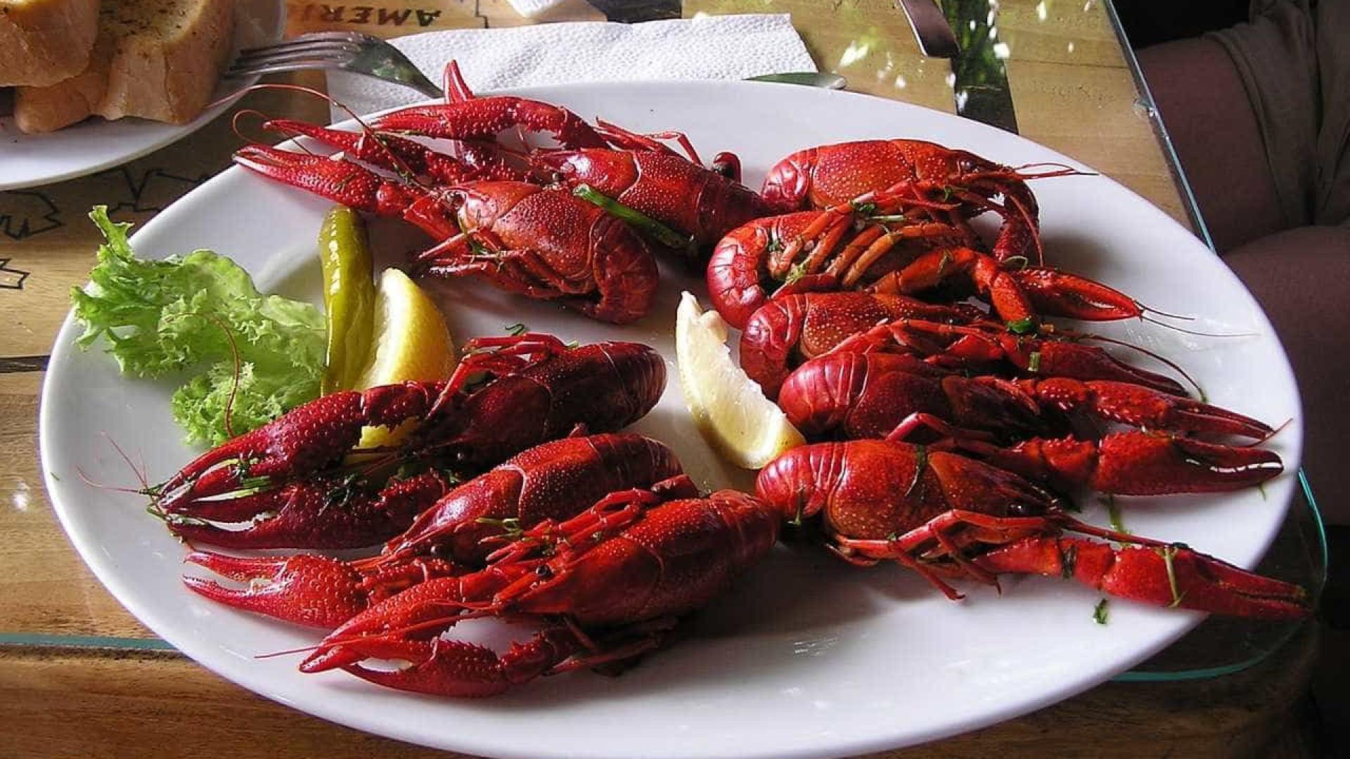 STF ignora críticas e acerta compra de lagostas e vinhos por R$ 481 mil