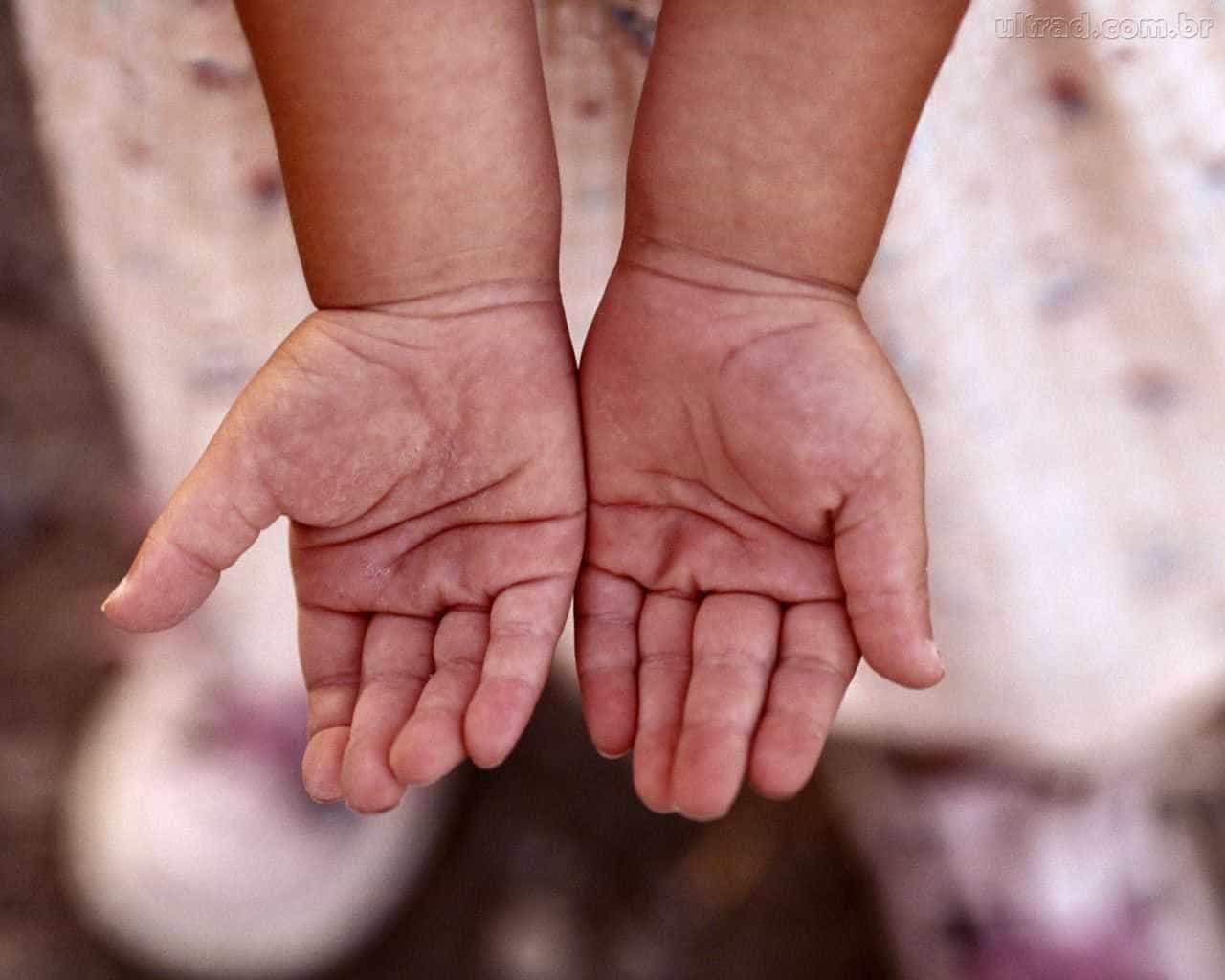 Criança ferida na queda de avião em São Paulo deixa UTI